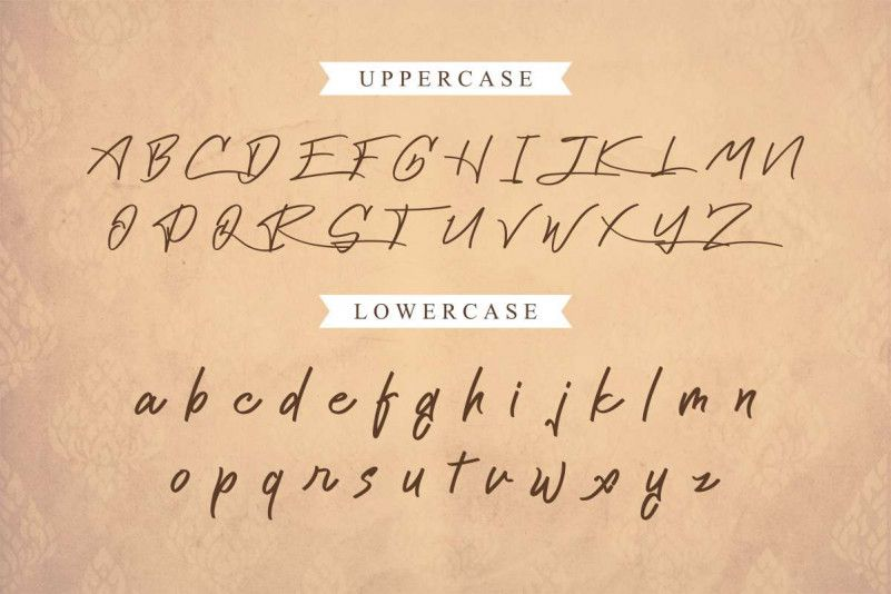 Cattily Calligraphy Font-3