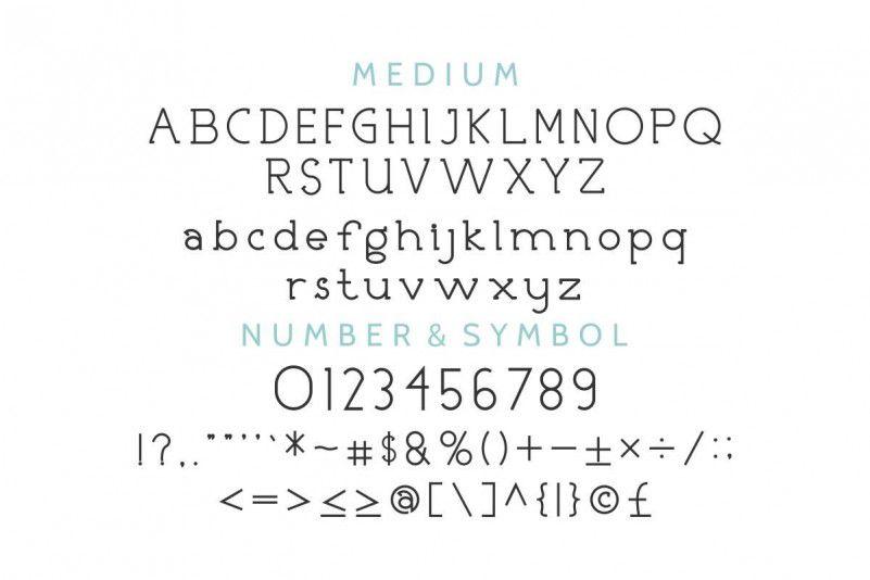 Nicolls Font Family-2