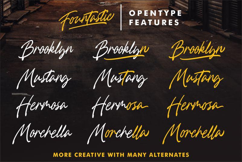 Fountastic Script Font-2