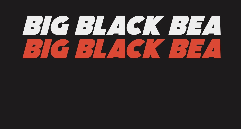 FF_Big-Black-Bear-Italic-example-1 webp (WEBP Image, 1440 × 770 pixels)