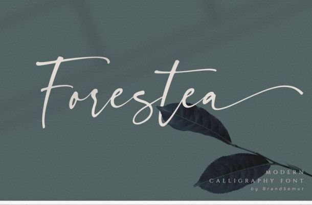 Forestea Modern Calligraphy Font