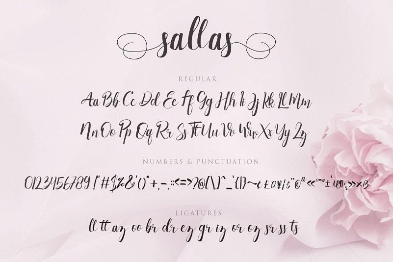 Sallas Modern Calligraphy Font-3