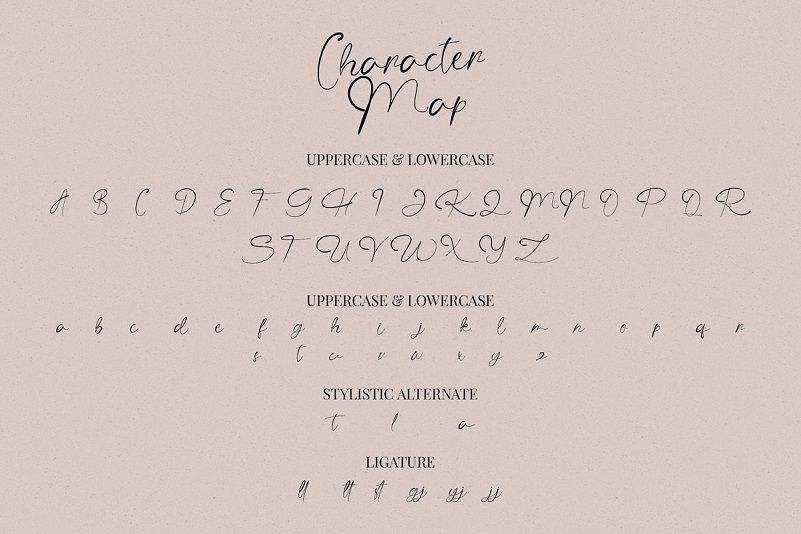 The Angellica Calligraphy Font-4