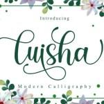 Luisha Modern Calligraphy Font