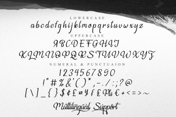 Voilleva Font-3