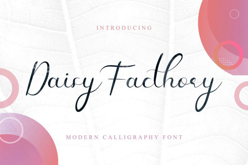 Daisy Facthory Calligraphy Font-1