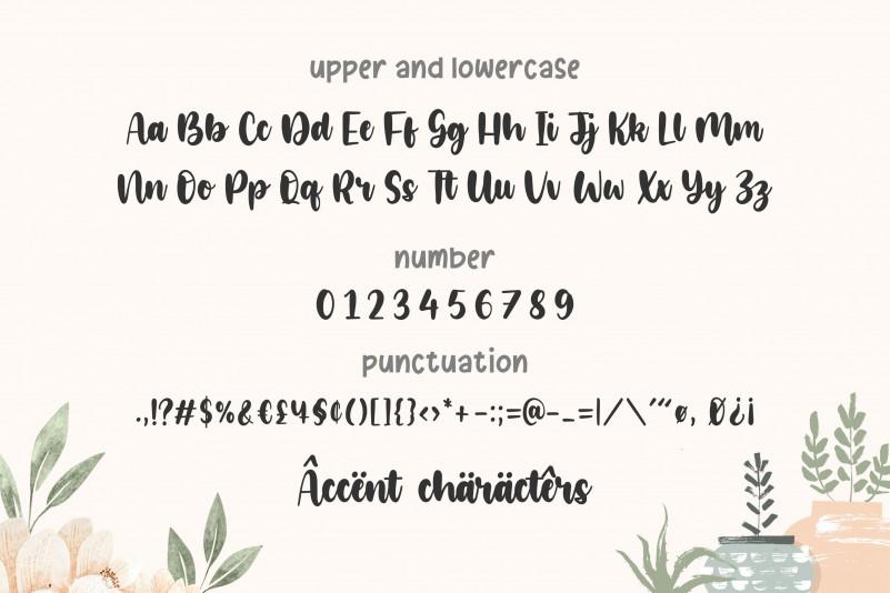 Glamori Bold Script Font-3