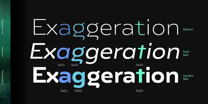 Regave Sans Serif Font-2