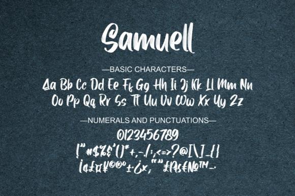 Samuell Brush Script Font-4