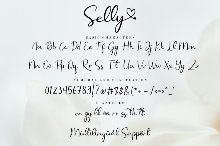 Selly Calligraphy Font-3