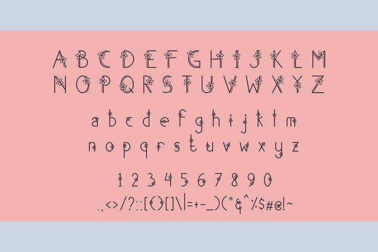 Shakila Display Font-2