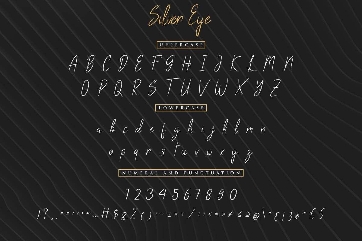 Silver Eye Grunge Handwritten Font-3