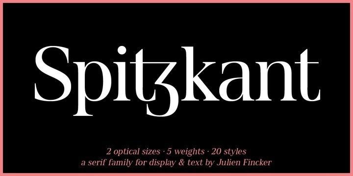 Spitzkant Serif Font-1