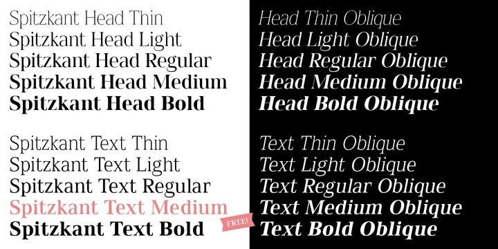 Spitzkant Serif Font-2