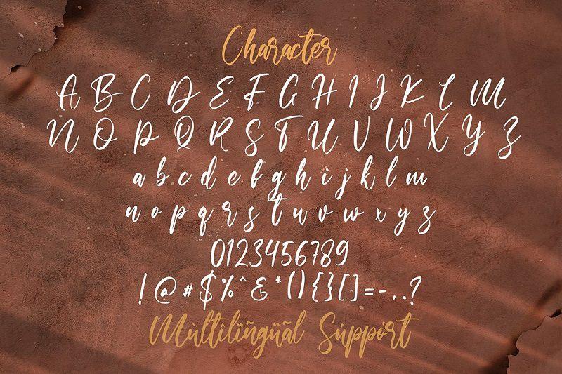 Walentiny Handwritten Script Font-4
