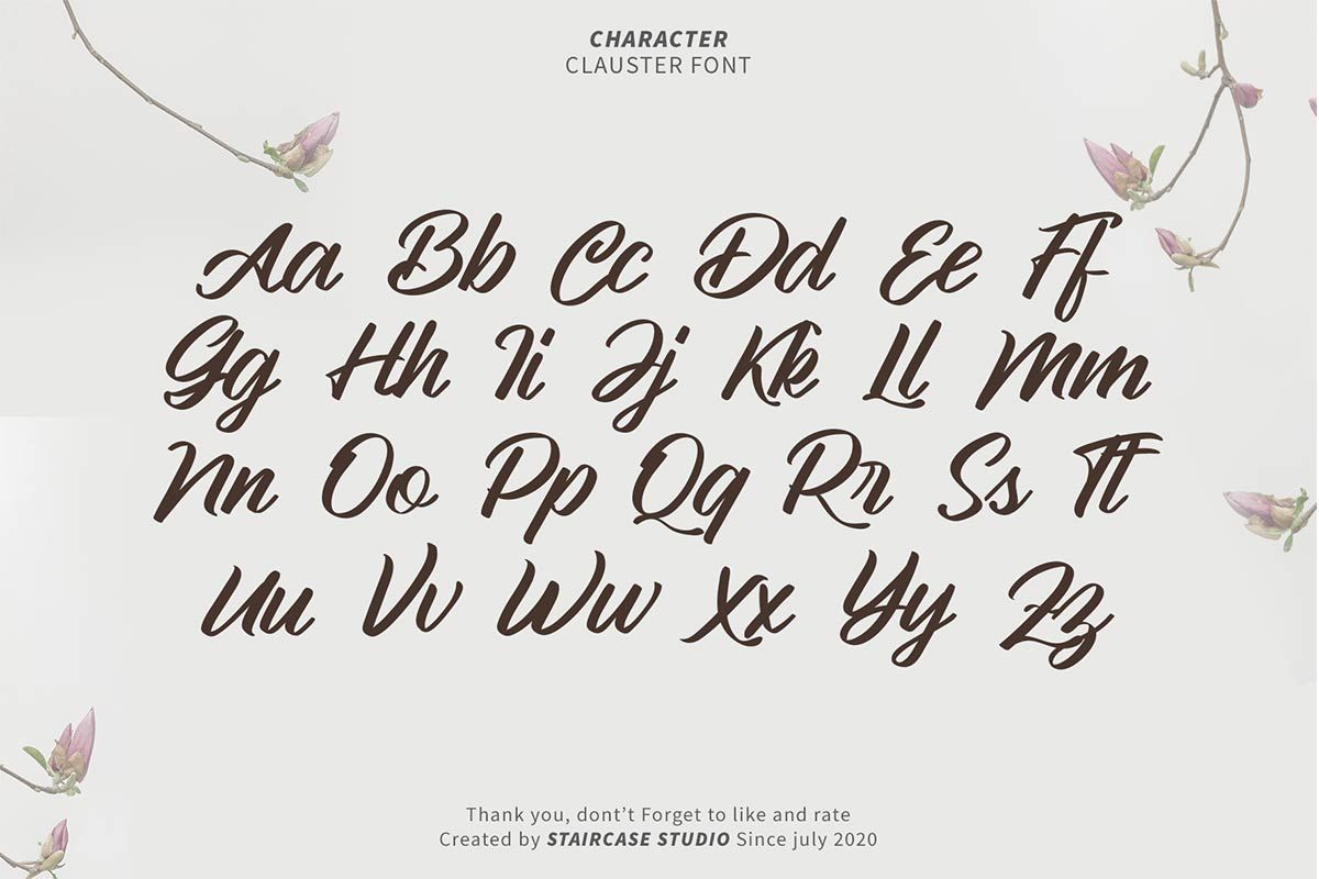 Clauster Script Font-3