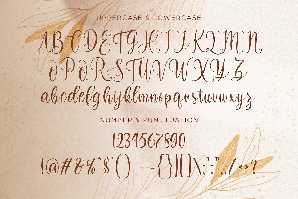 Dilan Whemsy Calligraphy Script Font-3