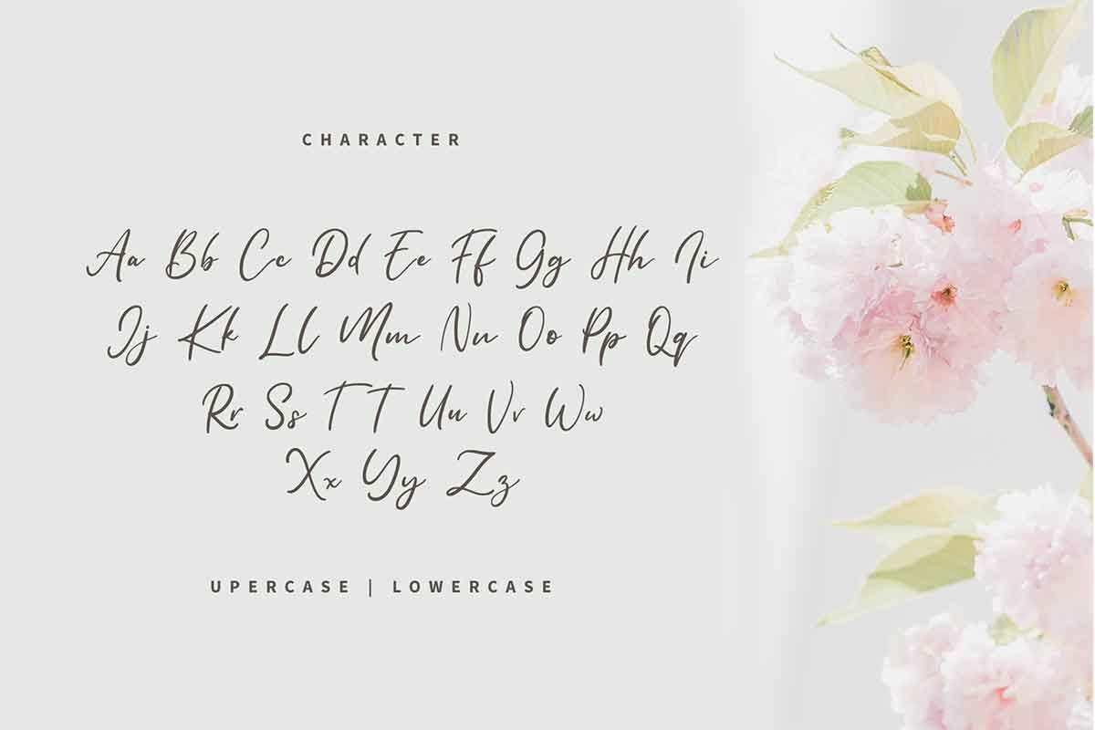 Reallax Reaxion Handwritten Font-3