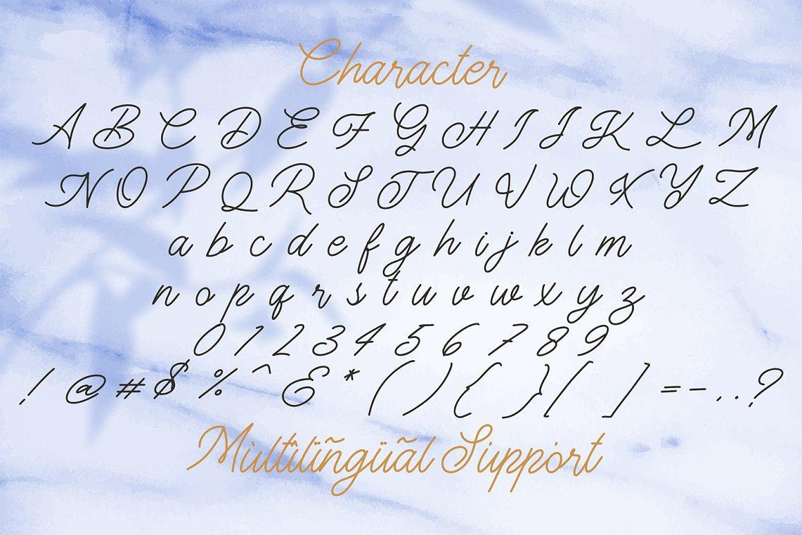 The Gallery Monoline Script Font-3