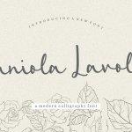 Zaniola Lavolce Callihgraphy Script Fonta