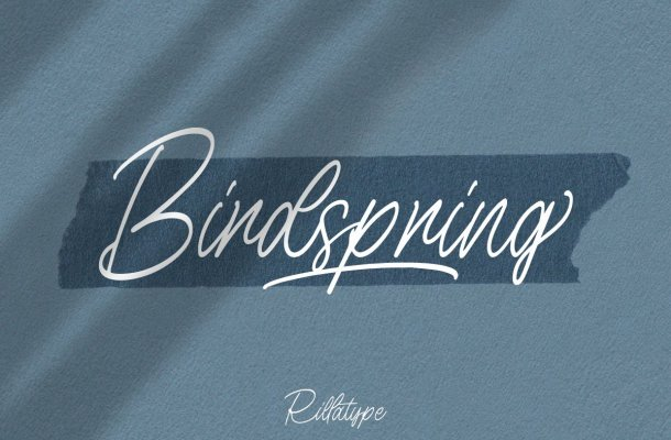 Birdspring Handwritten Signature Font