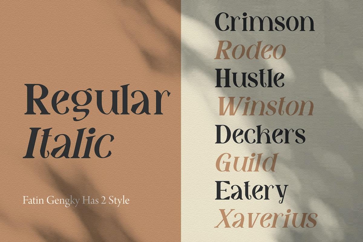 Fatin Gengky Casual Serif Font-2