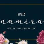 Namira Modern Calligraphy Script Font