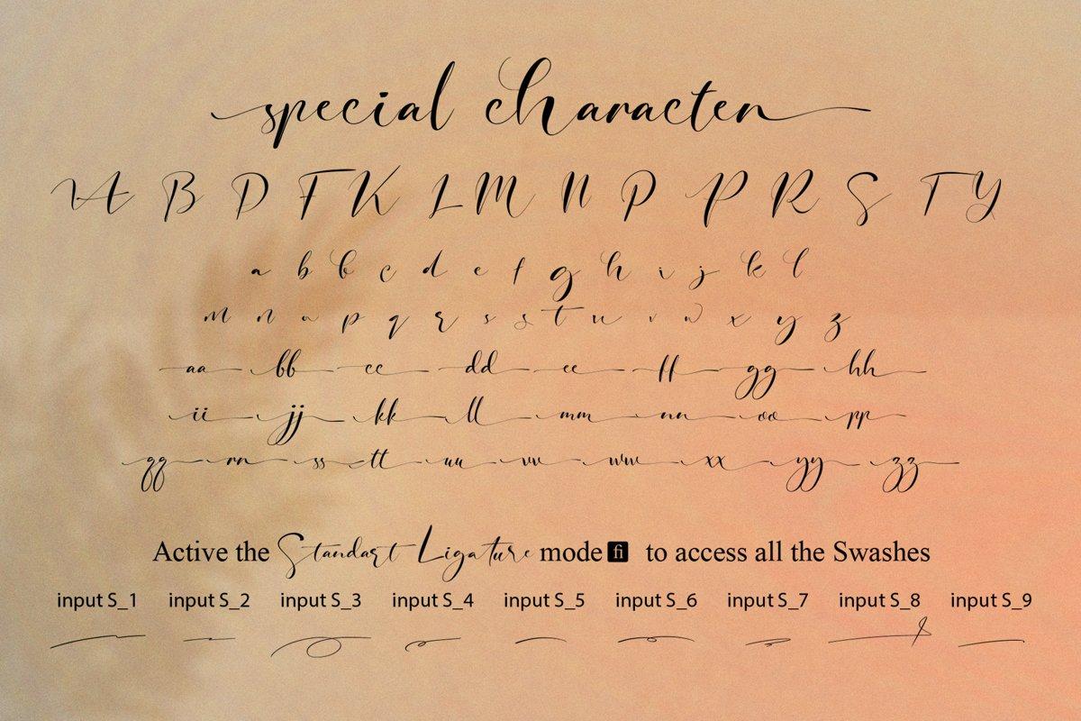 Signature Photopedia Handwritten Font-4