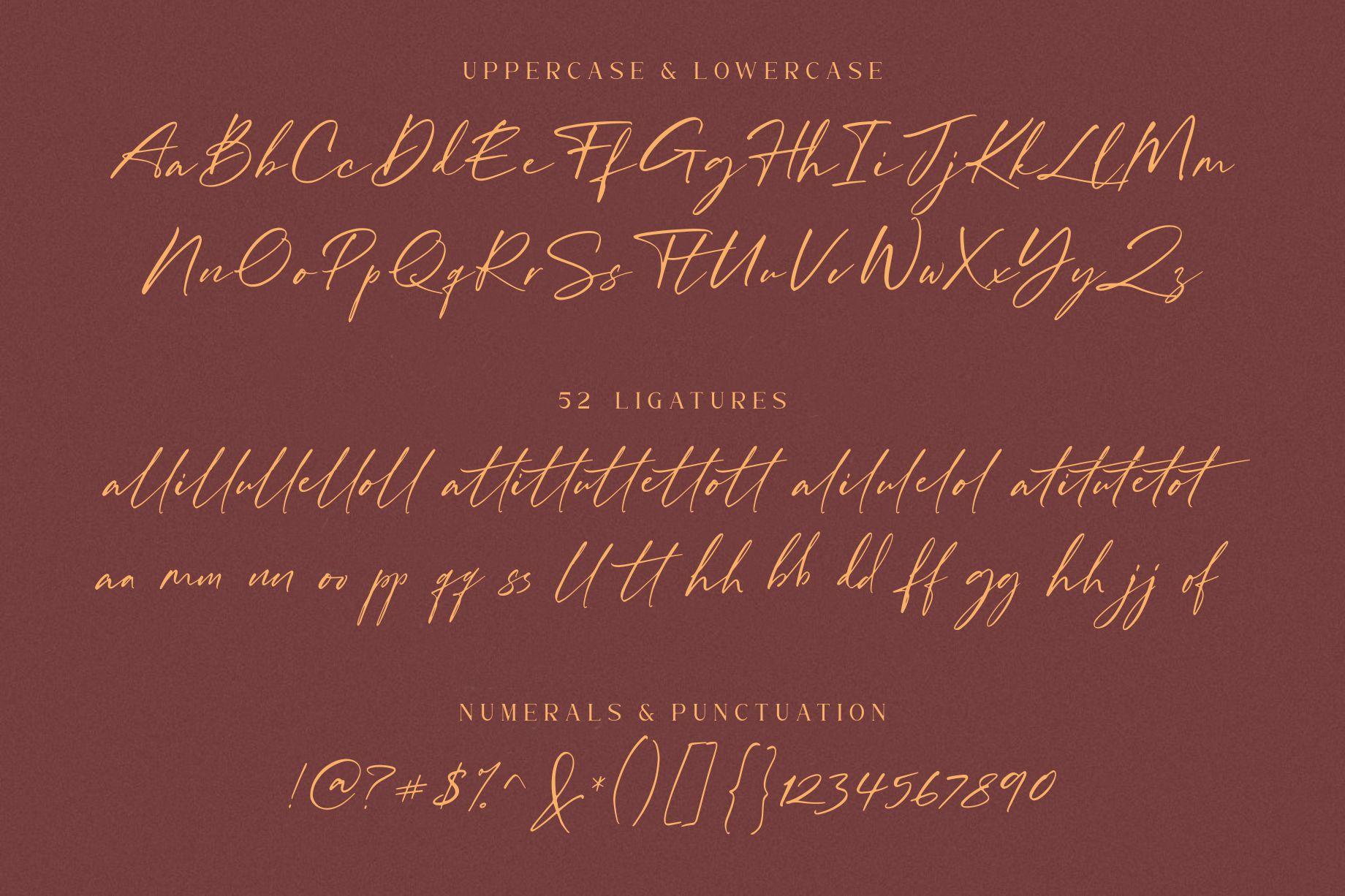 William Costinavel Handwritten Script Font-4