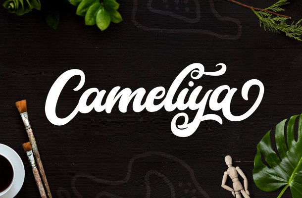 Cameliya Bold Calligraphy Script Font
