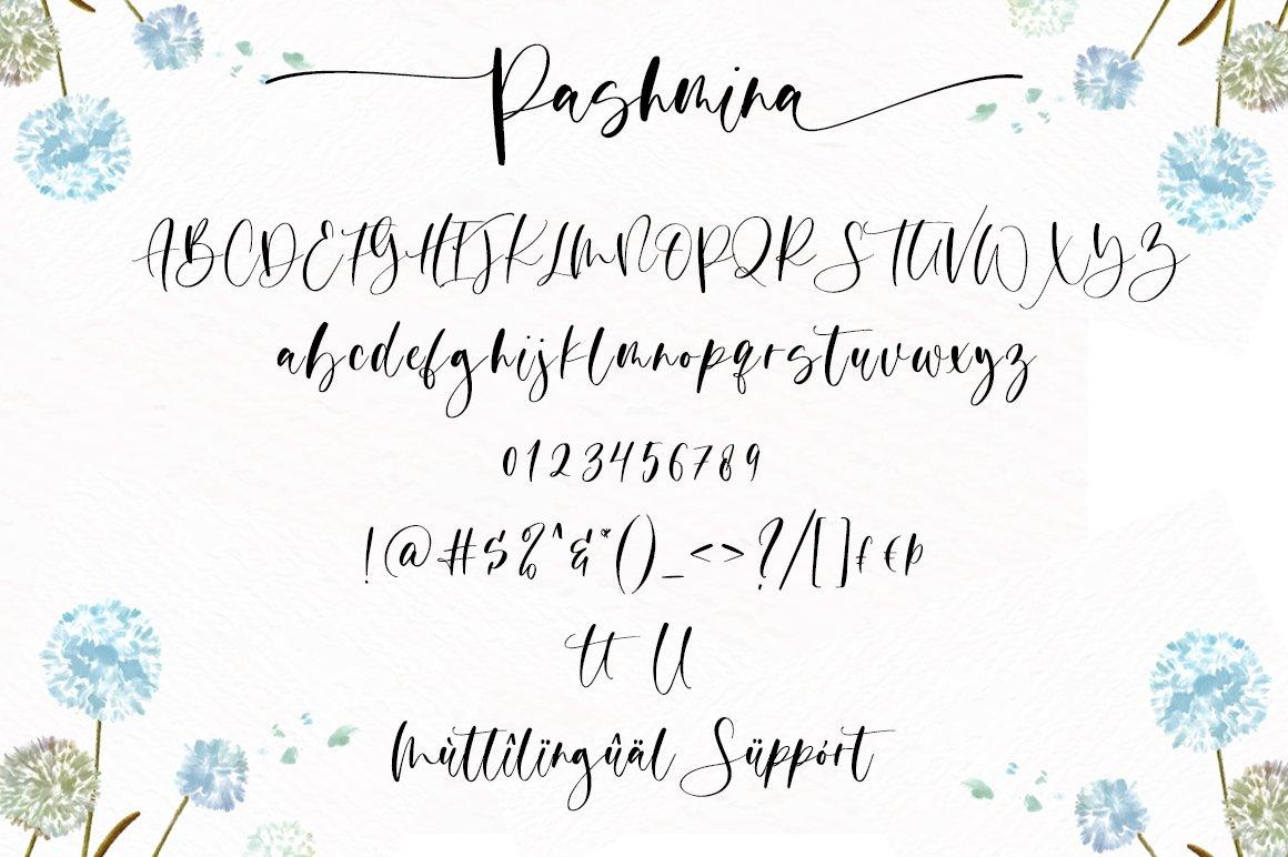 Pashmina Handwritten Script Font-4