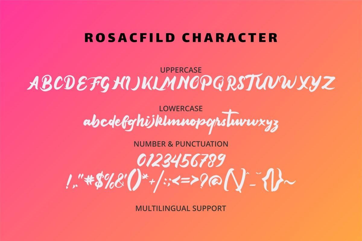Rosacfild Bold Script Font-3
