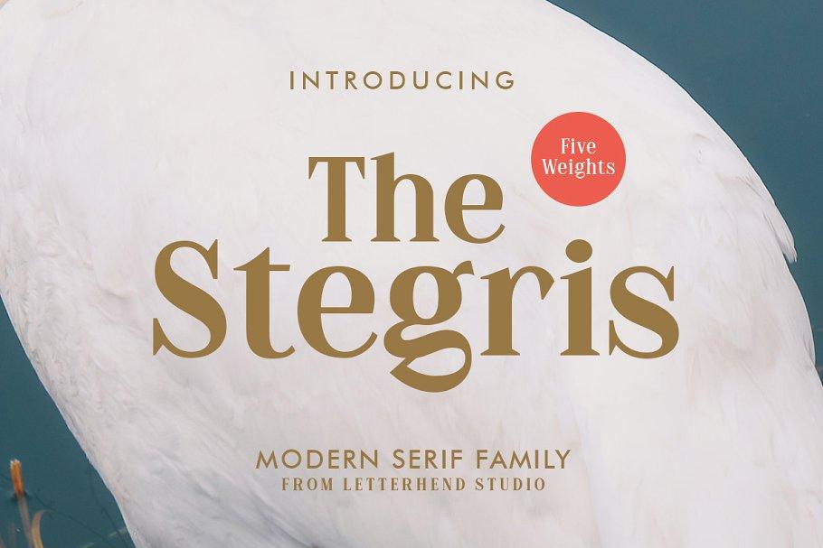The Stegris Serif Font Family-1