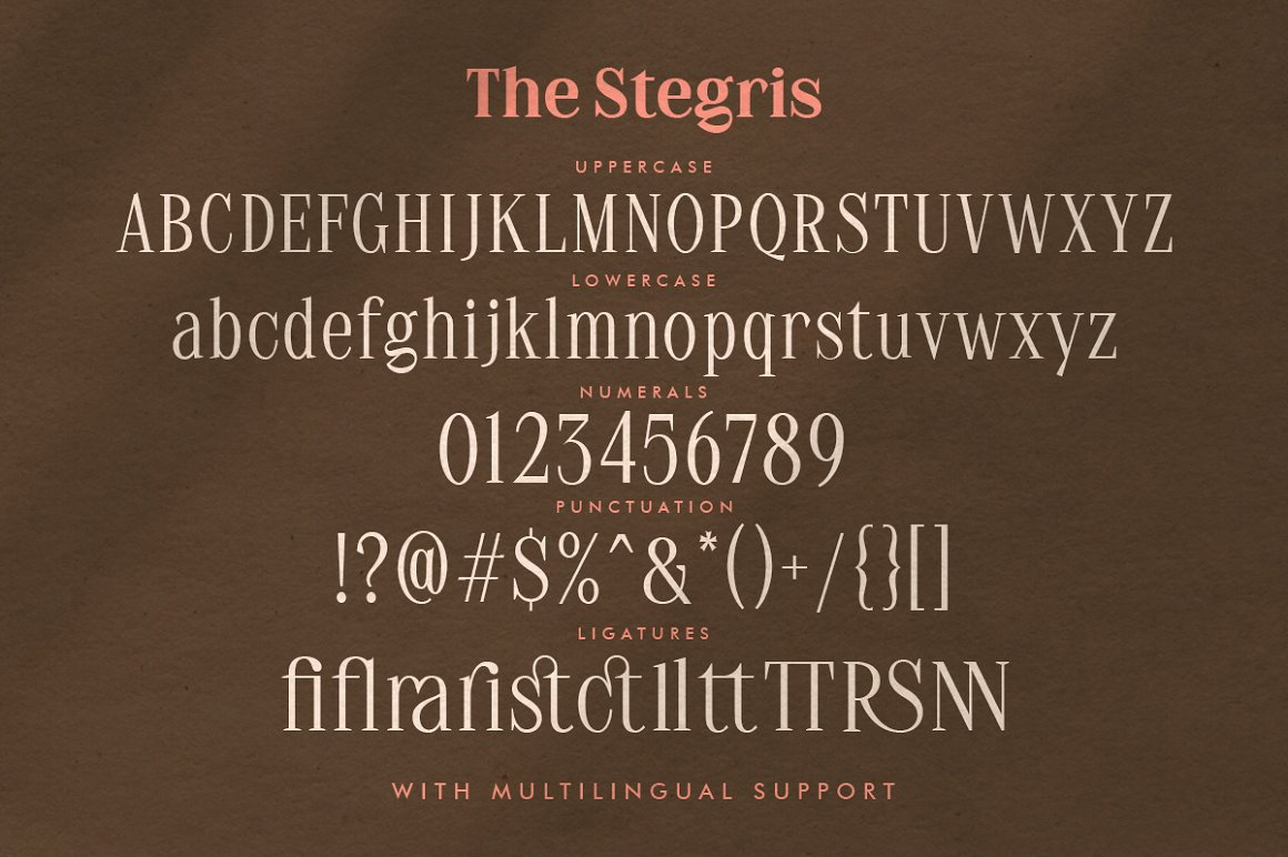 The Stegris Serif Font Family-4