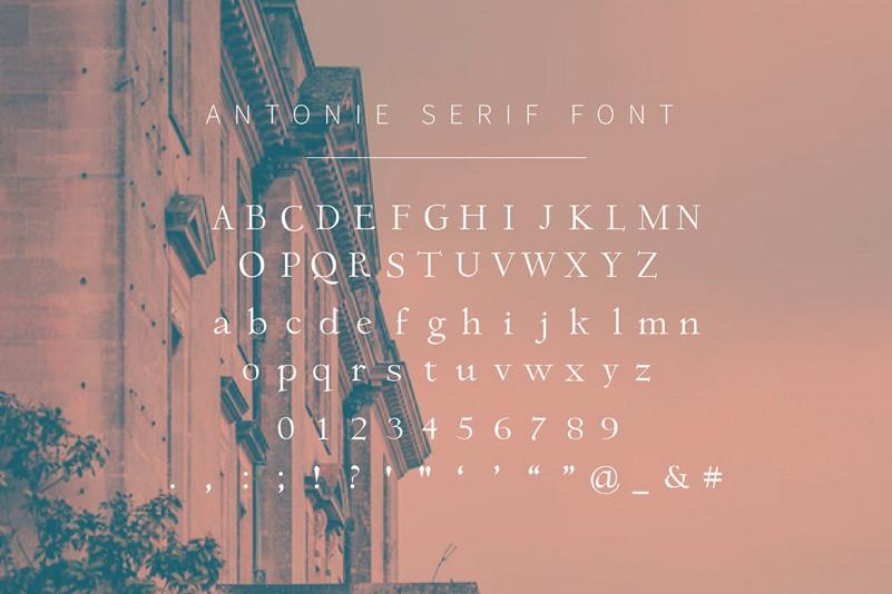 Antonie Classic Serif Font-3