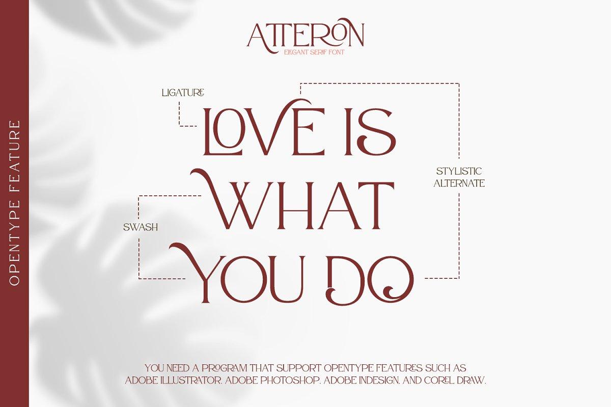 Atteron Elegant Serif Typeface-2
