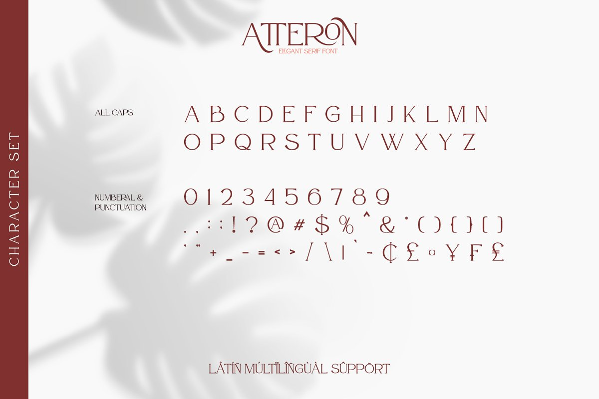 Atteron Elegant Serif Typeface-3