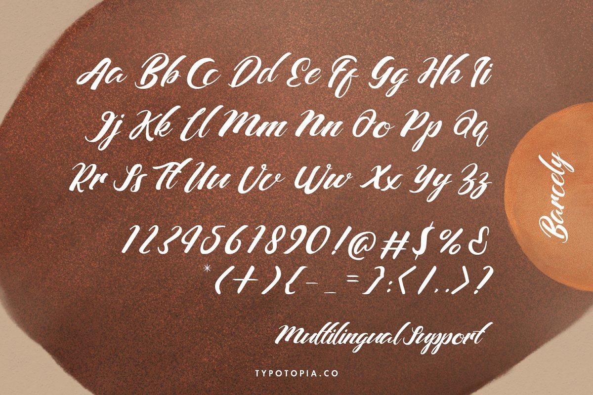 Barcely Fancy Script Font-3
