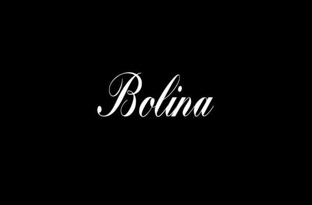 Bolina Calligraphy Script Font