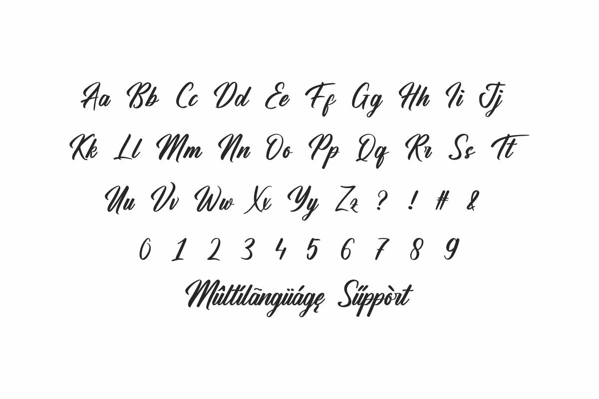 Hamsterly Script Font-3