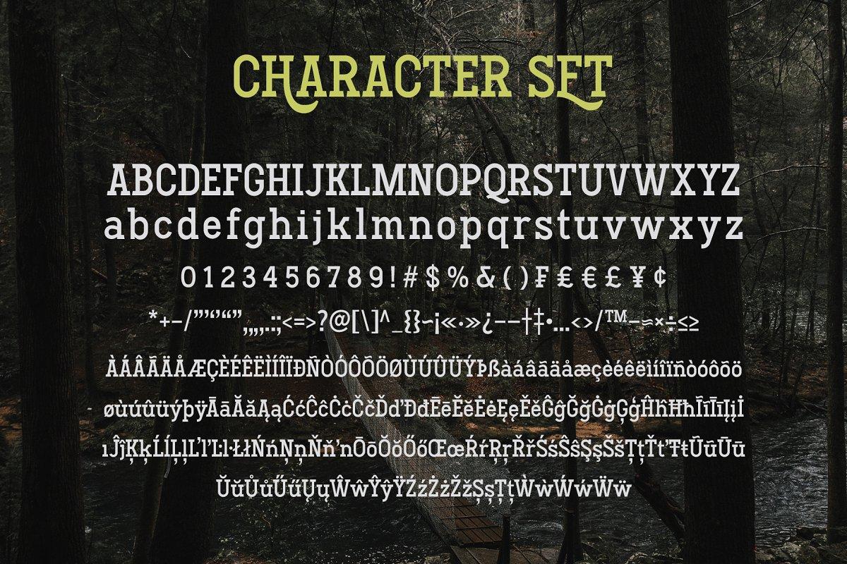 Hodgeson Calligraphy Slab Serif Font-3