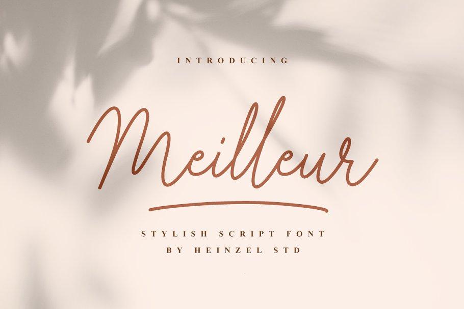 Meilleur Handwritten Script Font