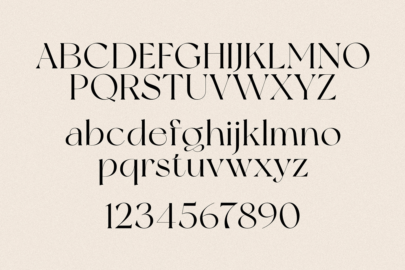 New York Modern Serif Typeface-3