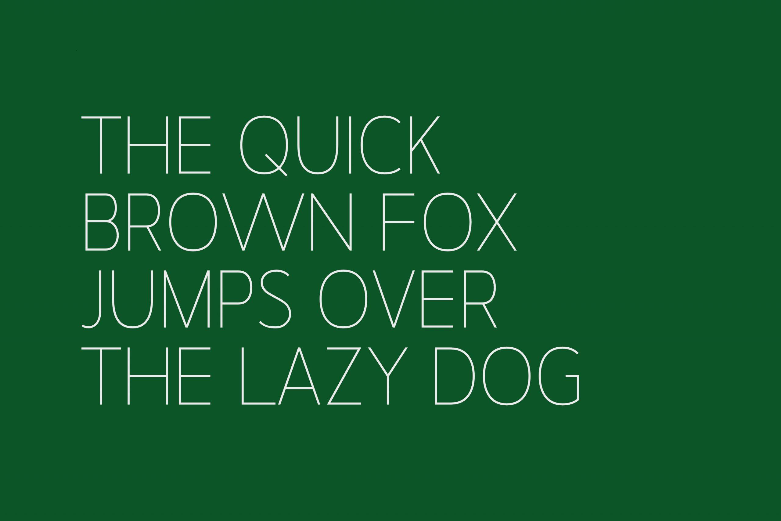 Nugo Free Sans Serif Font-4