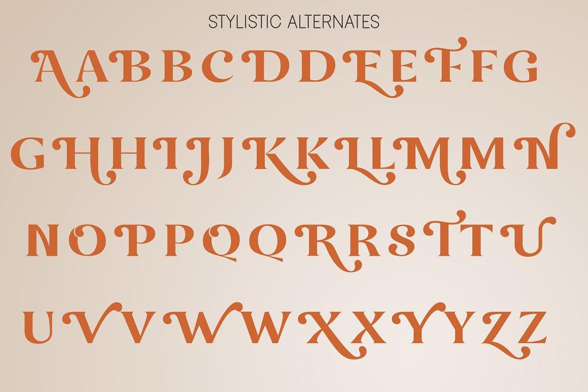 Okemo Modern Bold Serif Font-3