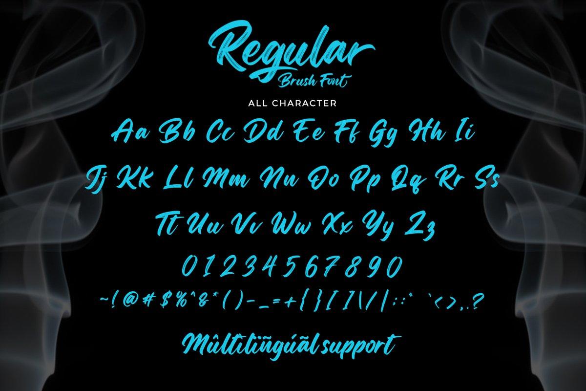 Regular Brush Script Font-3