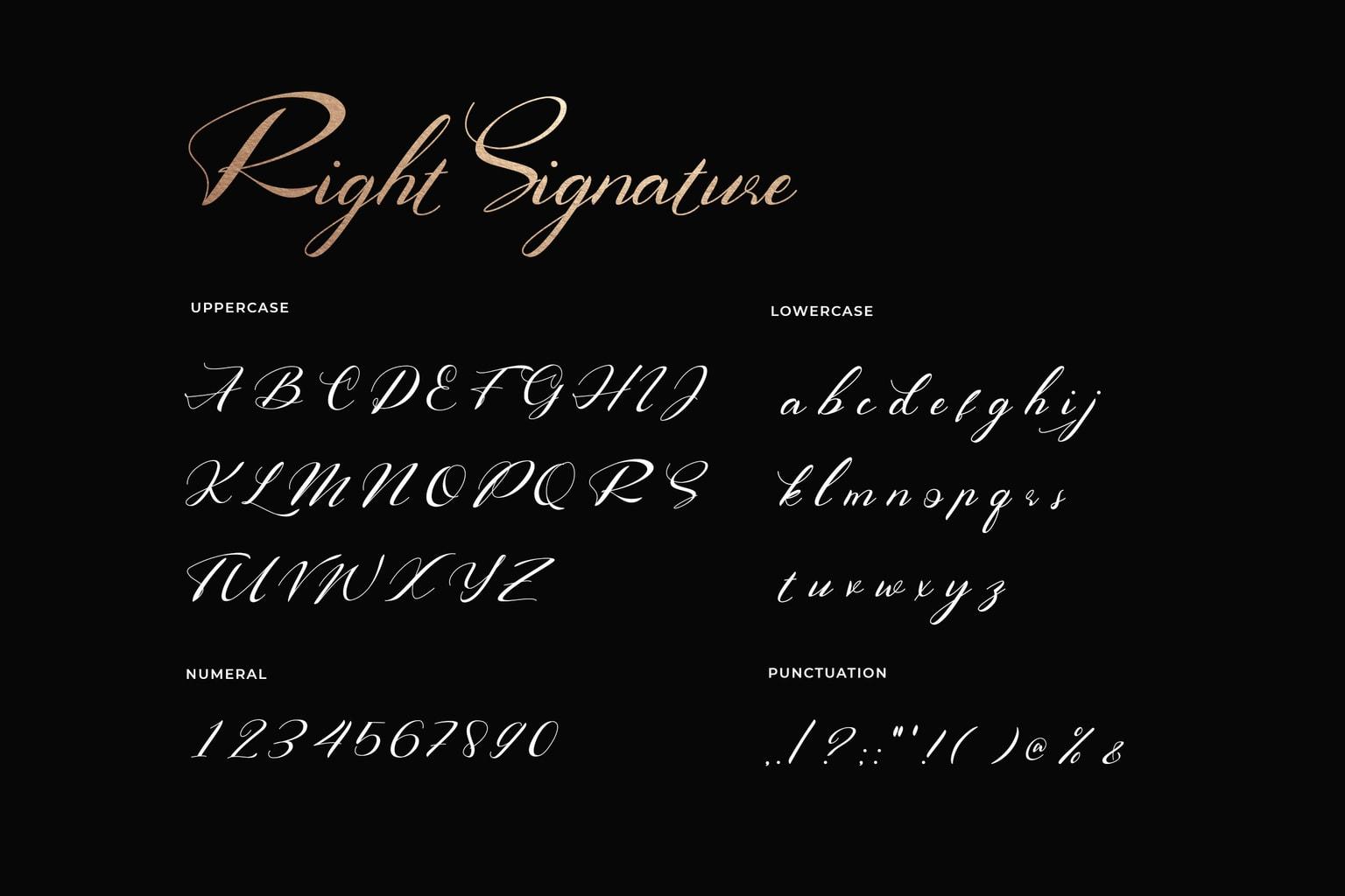 Right Signature Script Font-3