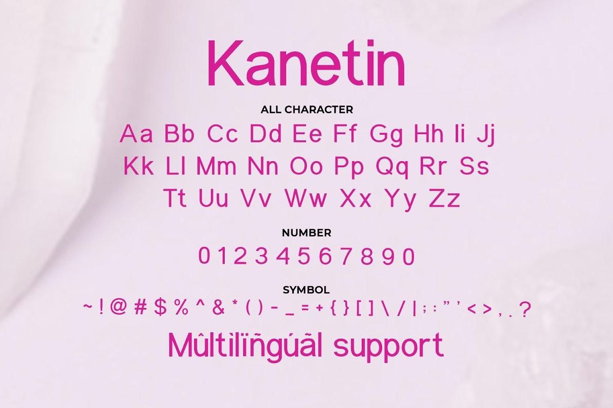 Kanetin Beautiful Sans Serif Font-3