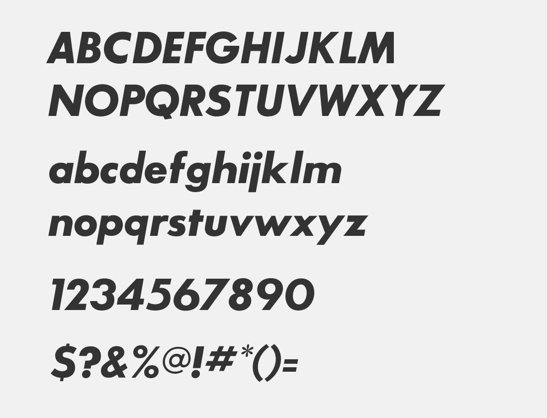 06 SansSerifBldFLF-Italic