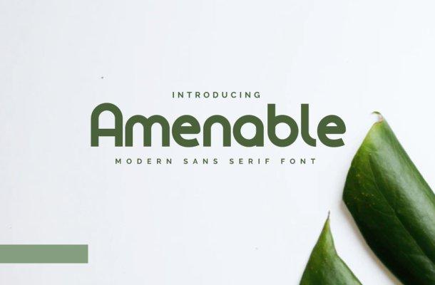 Amenable Font